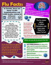 Flu Facts Infographic