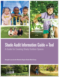 Shade Audit Tool