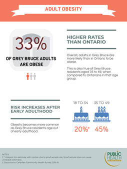 33% of adults in Grey Bruce are obese. Overall, adults in Grey Bruce are more likely than in Ontario to be obese