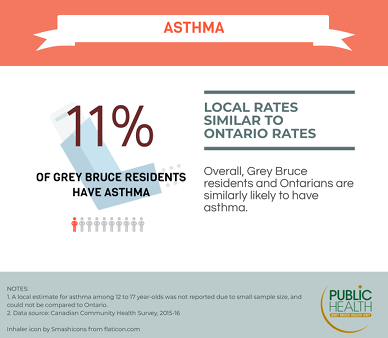 11% of Grey Bruce residents have asthma. Grey Bruce residents and Ontarians are similarly likely to have asthma