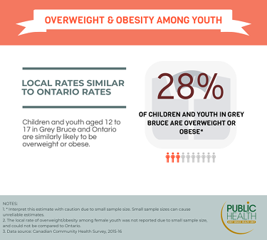 28% of youth in Grey Bruce are overweight or obese. Youth in Grey Bruce and Ontario are similarly likely to be overweight or obese